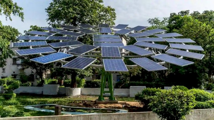 World largest solar tree